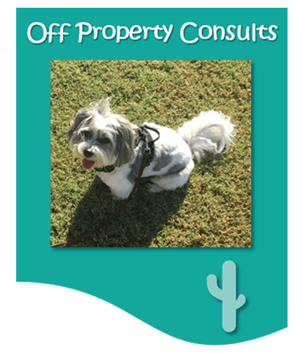 Off property consults graphic