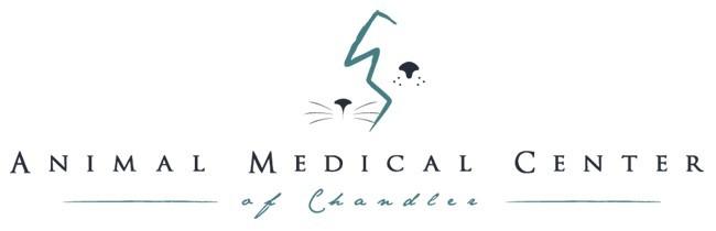 AMCofC Logo