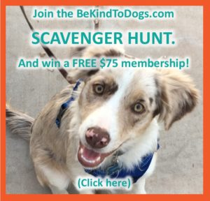 recommended by Be Kind To Dogs - Dog Training Call 480-272-8816 for Dog Training in Chandler, AZ, Dog Training in Gilbert, AZ, Dog Training in Tempe, AZ, Dog Training in Mesa, AZ, Dog Training in Ahwatukee, AZ and surrounding areas.